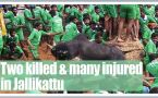 Jallikattu held in Tamil Nadu, 2 killed and hundreds injured