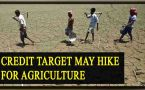 Budget 2017: Modi Govt may hike credit target for agriculture Sector
