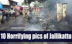 Jallikattu turns violent: Watch 10 most horrifying pictures of protest