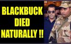 Salman Khan claims, Blackbuck died of natural causes