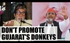 Akhliesh Yadav urges Amitabh Bachchan not to promote 'Donkeys of Gujarat'