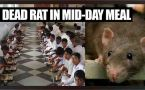 Delhi school students served mid day meal with dead rat, 9 fall sick