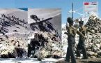 Sikkim Stand off : Pangong skirmish video surface, Watch