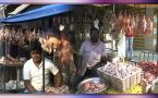Karnataka : Dip in sales of chicken after reports of Bird flu, Watch video