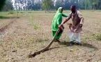 UP Woman catches huge python from fields in Meerut