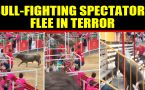 Bull-fighting spectators flee in terror as bull jumps into stands, video viral