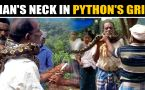 Kerala man rescued from python's grip, video goes viral
