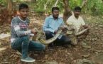 Watch: Forest Dept rescues 10-ft-long python in Mumbai