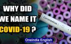 US President called the COVID-19 'the Chinese virus', why is that wrong?