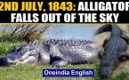 July 2nd, 1843: An alligator believed to have fallen out of the sky and other stories