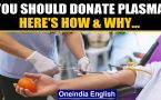 Donate plasma to help save Covid patients: Why & how you can be a hero