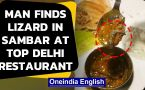 Man finds lizard in Sambhar at top Delhi restaurant, video goes viral