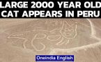 Large ancient cat appears in Peru's Nazca Lines