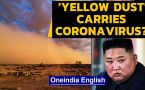 North Korea warns 'yellow dust' can carry coronavirus ...
