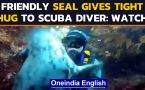 Seal gives a heartwarming hug to the scuba diver, melts hearts on the internet