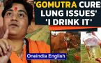BJP MP Sadhvi Pragya says, 'cow urine cures lung infection, can stop Corona' | Watch