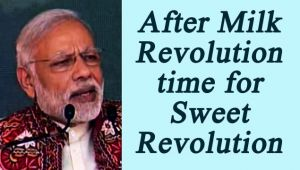 PM Modi in Deesa : After 'Milk Resolution' its time for 'Sweet Revolution', Watch video