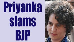 UP Elections 2017:Priyanka Gandhi slams BJP over sexist remark