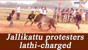 Jallikattu protesters lathicharged in Tamil Nadu, 30 detained