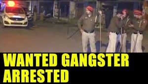 Punjab police arrest wanted gangster, supporters create ruckus : Watch video
