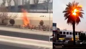 Kuwait witness 62 degrees Celsius temperature, Trees and bushes catch fire, Watch