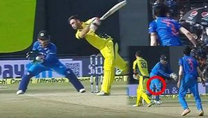 India vs Australia 3rd ODI : Glen Maxwell tricked again by Dhoni and Chahal into stumping
