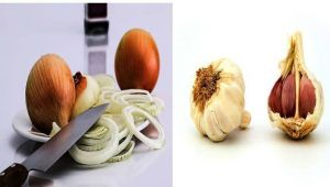 Navratri 2017: Why people do not eat onion and garlic during Navratri