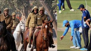 India vs NZ 3rd ODI : Security for Kanpur pitch tightened ahead of match