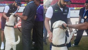 Virat Kohli enjoy special moment with security dogs ahead of Nagpur test