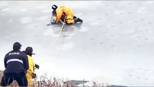 Dog stuck in frozen creek rescued by firefighters
