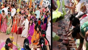 Pongal celebrated across India with great favor, Watch video