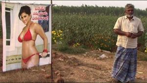 Sunny Leone posters saved Andhra farmer's crops from evil gaze