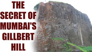 Gilbert Hill in Mumbai has a secret that dates back 66 million year
