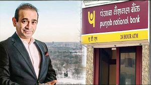 PNB fund scam: Bank suspends 8 more employees