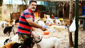 Uncommon dog lover from Bengaluru