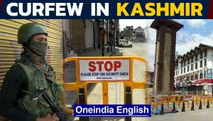 Kashmir curfew: A year since special status was revoked