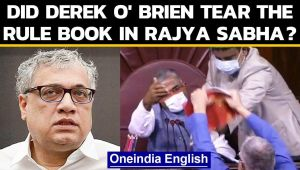 Derek O' Brien claims didn't tear the rule book in Rajya Sabha, 'brutal murder of democracy'