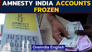 Amnesty International forced to halt India operations