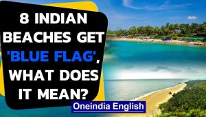 'Blue Flag' awarded to 8 beaches in India, what does it mean: Watch the video