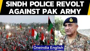 Pak turmoil: Sindh police go on mass leave, revolt against Army