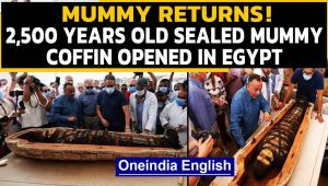 Mummy returns: 2500 years old, sealed mummy coffin opened in Egypt: Video goes viral
