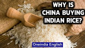 China buys Indian rice for the first time in at least 3 decades: Why