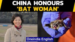 China's bat woman honoured, she went missing early last year