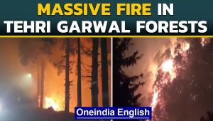Massive fire in Tehri Garhwal forests continue to blaze