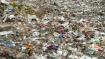Scientists raise concern over marine pollution by plastics