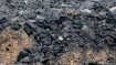 Coal India to conduct third phase special forward e-auction