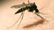 Venezuela: Malaria back with a vengeance