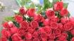 Don't observe Valentine's Day: Pak president