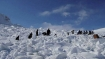 Shimla, Manali cut off after snow, traffic hampered