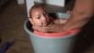 'Ebola, zika can be predicted using environmental changes'